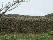 玉城城の城壁