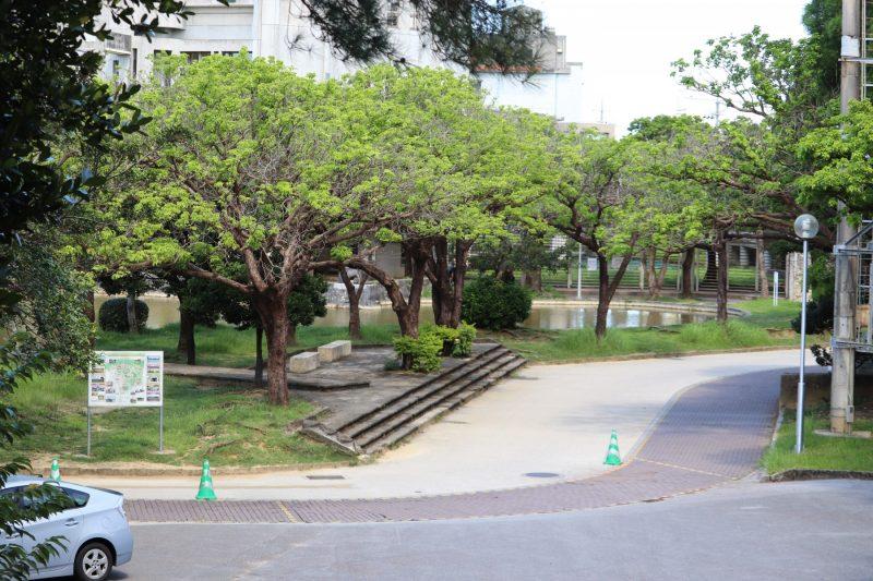 護国神社から公園を見る