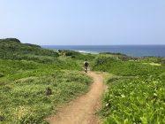 辺戸岬の遊歩道