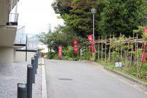 沖宮への道