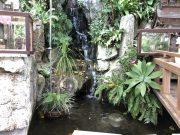弁財天宮の滝